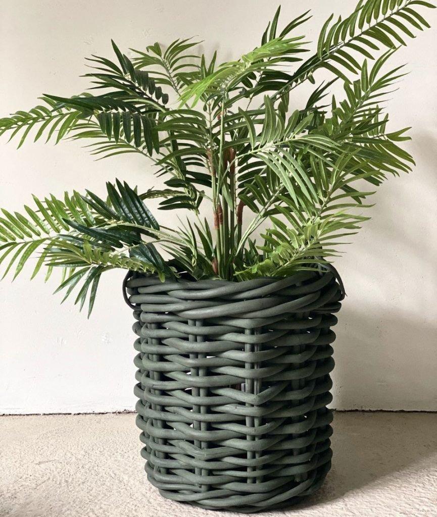 Legergroene mand met plant