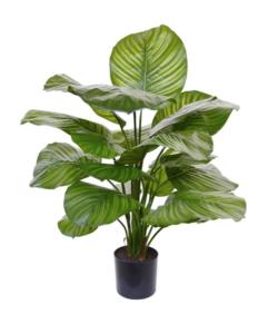 Calathea kunstplant van Maxifleur